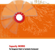 https://www.shareweb.ch/site/DDLGN/Documents/GIZ-2009-capacity-works-manual.jpg