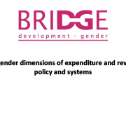 https://www.shareweb.ch/site/DDLGN/Documents/Gender-dimensions-of-expenditure-and-revenue-policy-and-systems_Birchall-and-Fontana-(2015).png