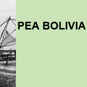 https://www.shareweb.ch/site/DDLGN/Documents/Session%203_Presentation%20PEA%20Bolivia.png